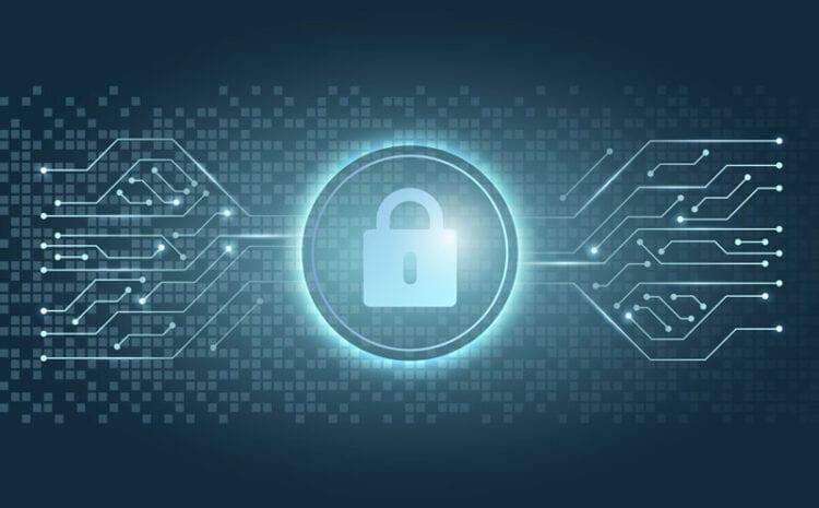 Cifrado de archivos y protección de datos